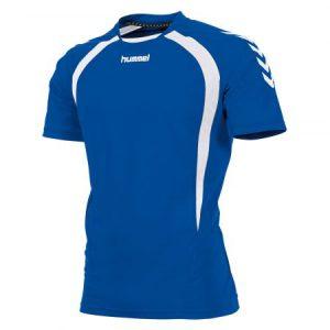 Afbeelding Hummel team t-shirt heren blauw