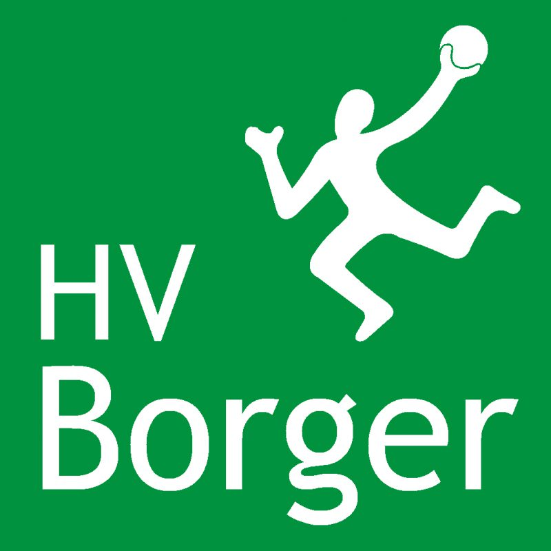 Afbeelding log handbalvereniging Borger