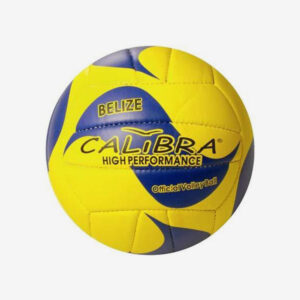 Afbeelding Claibra beachvolleybal geel blauw